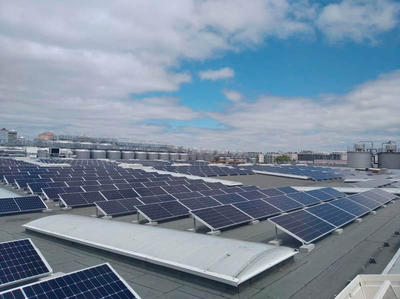 La compañía cervecera Estrella Galicia instala 1.000 paneles solares para autoconsumo